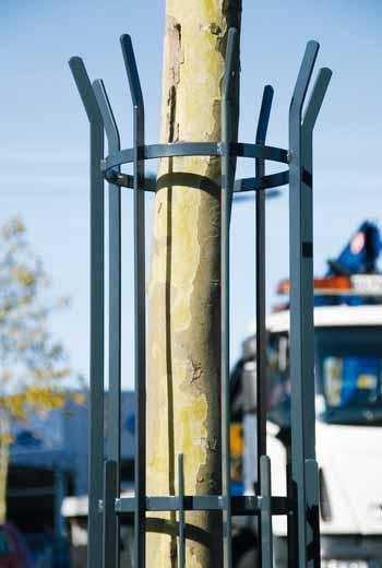 Area - Baumschutzgitter - Séville