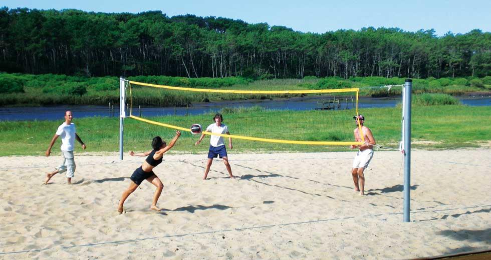 Area - Sport und Freizeit - Palm beach